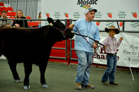 Beef Breed Pee-Wee Showmanship