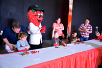 Contest Youth Strawberry Stemming